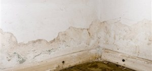 What Can Happen If You Leave Household Water Damage Untreated?