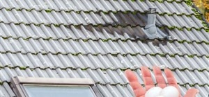 Got a Hail-Damaged Roof? Here's What Can Happen If You Ignore It