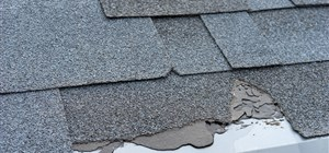 Post-Winter Roof Damage: What to Watch For